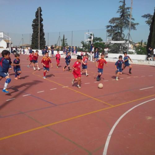 Campeonato Santo Domingo