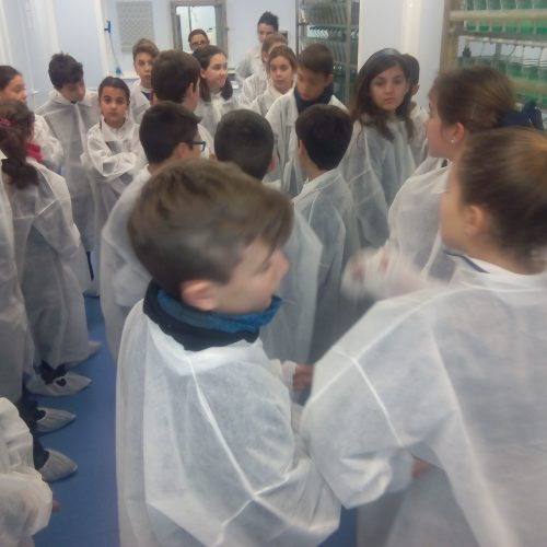 Salida de 5ºB y 5ºA al mundo de la Biotecnología