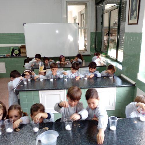 """Laboratorio: """"Plantamos una semilla"""" (Ed. Infantil 4 años)"""