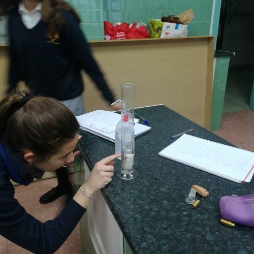 Iniciándonos en el laboratorio (2ºESO A)